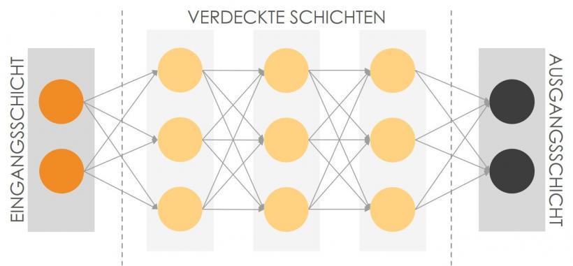 Aufbau neuronaler Netze
