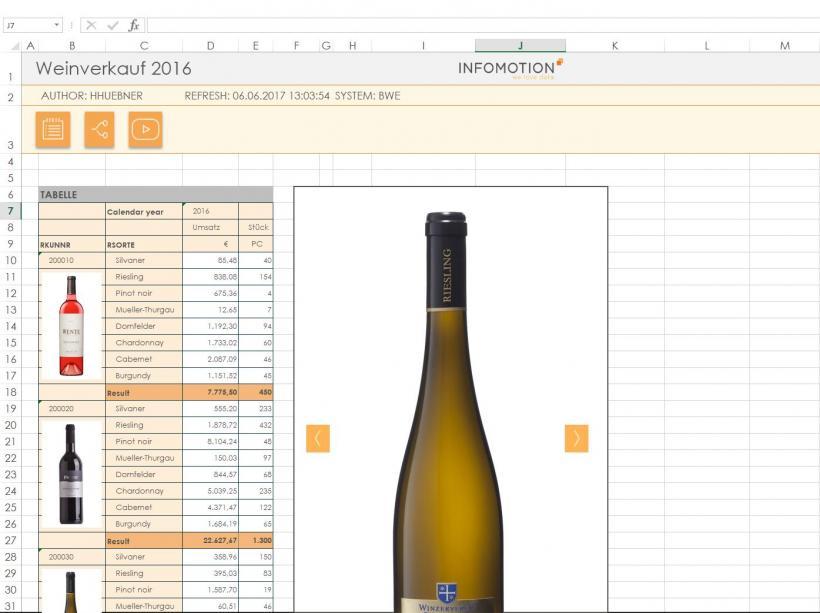 INFOMOTION Add-in zur Bildintegration_Screenshot