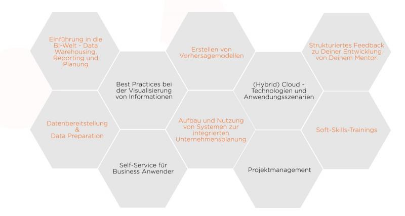 Schwerpunkte der Traineeprgramm Business Intelligence Analytics